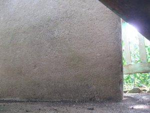 Dusun Wotan 2