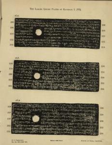 Leiden Charter-50