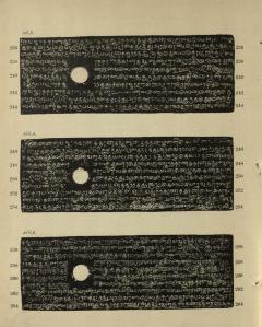 Leiden Charter-51